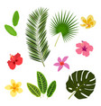 tropical leaves and flowers summer elements for vector image