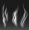 White smoke set on black background vector image