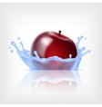 Red apple with water vector image