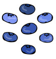 blueberry doodle style design isolated on vector image
