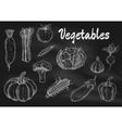 chalk sketched vegetables on blackboard vector image