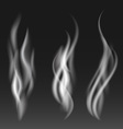 White smoke set on black background vector image