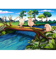 Hedgehogs playing at the river vector image