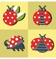 Ladybug icons in style on yellow background vector image