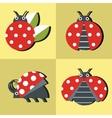 Ladybug icons in style on yellow background vector image