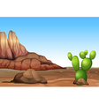 A desert with a cactus vector image