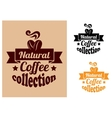 Natural coffee banners set vector image vector image