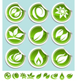 green eco stickers vector image