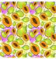 seamless pattern papaya fruits exotic ornament vector image