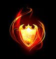 Fiery Shield vector image