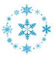 Rounded decorative snowflakes vector image