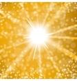 Sun Burst vector image vector image