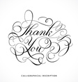 Calligraphical inscription Thank you vector image