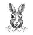 Rabbit Engraving vector image vector image