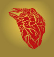 heart abstract vector image