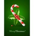 sweet christmas caramel cane vector image