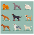 Dog flat icons set vector image