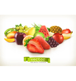 Harvest juicy fruit and berries isolated on white vector image vector image