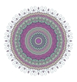 Isolated mandala pattern Vintage ethnic vector image