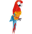 A bright macaw parrot isolated on white background vector image