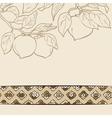 seamless pattern from orange persimmon vector image