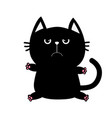 black cat icon cute funny cartoon grumpy vector image