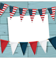 usa bunting vector image vector image