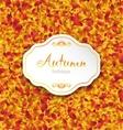Autumn Card on Orange Leaves Texture September vector image