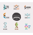 DNA genetic elements and icons collection vector image vector image