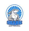 Muscular Shark Logo vector image