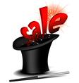 Magic sale hat vector image vector image