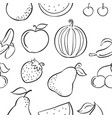 collection fruit various pattern style vector image