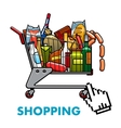 Full shopping cart with food and drinks vector image vector image