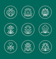Set of Thin Line Floral Design Elements for Logos vector image