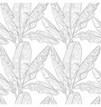 banana leaves pattern vector image
