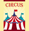 circus poster amazing show flat vector image