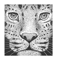 Leopard Engraving vector image vector image