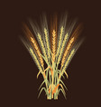 ripe rye set - vector image