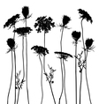 Traced graphic elements weeds vector image