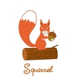 Little squirrel character vector image