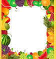 frame template of fruit for you design vector image