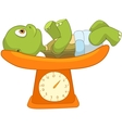 Funny Turtle Baby Weighing vector image