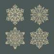 Snow flakes set 3 vector image vector image