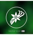 Vanilla flower and vanilla pods Logo vector image