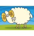 cartoon of funny happy ram vector image vector image