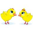 cartoon chickens vector image