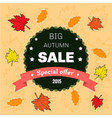 autumn sale floral poster vector image