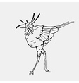 Hand-drawn pencil graphics secretary bird eagle vector image