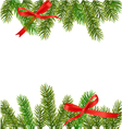 xmas tree branches vector image