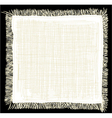 Linen napkin vector image vector image